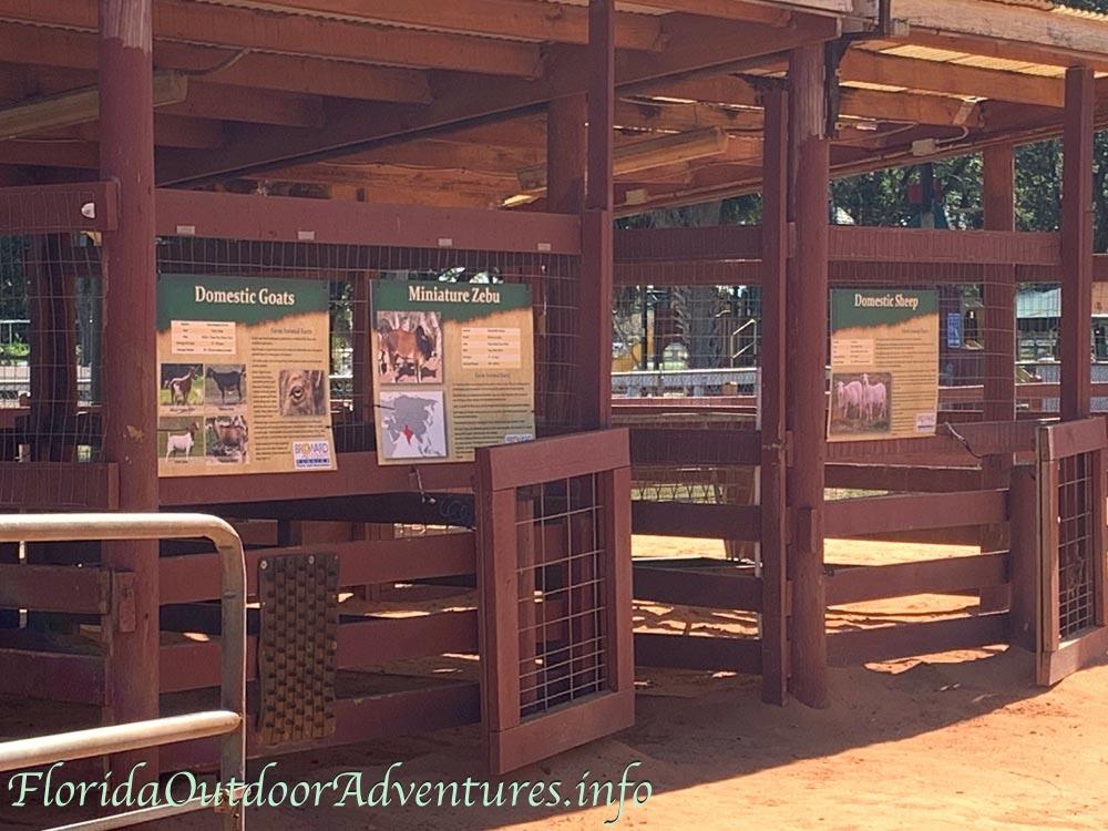 floridaoutdooradventures.info-009.jpg