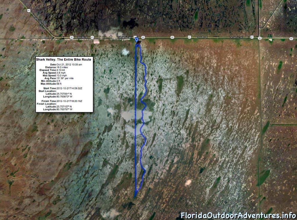 shark-valley-full-loop-floridaoutdooradventures.info-16.jpg